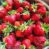 14 Manfaat buah strawberry yang mengagumkan