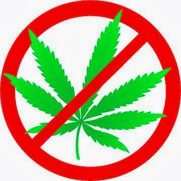 La marihuana destruye el cerebro de los jovenes