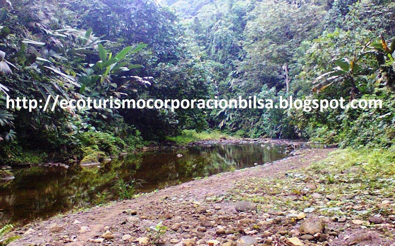 ECOTURISMO CORPORACION BILSA ECUADOR