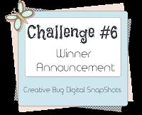 Challenge #6 Winners