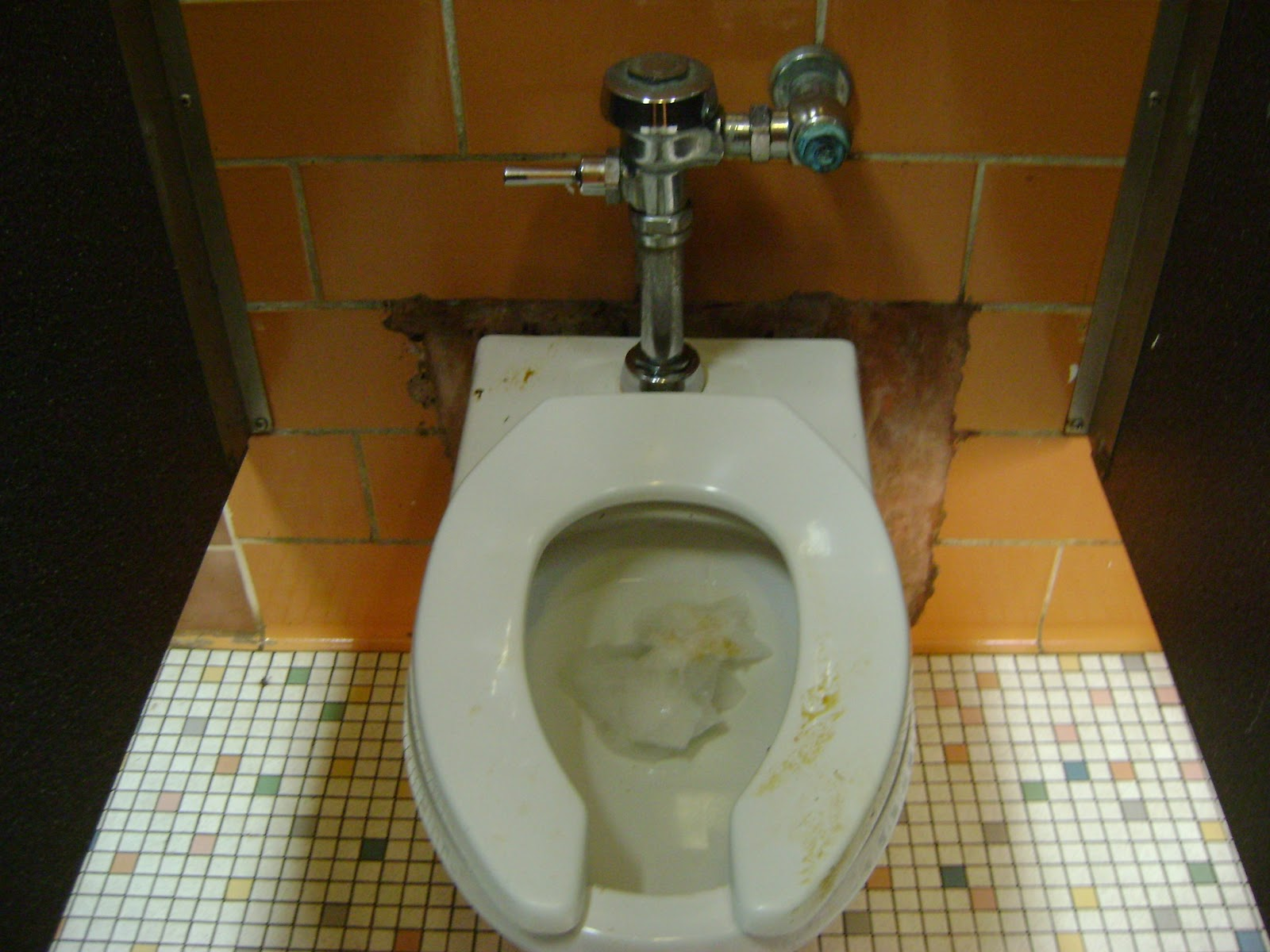 Watery diarrhea in toilet