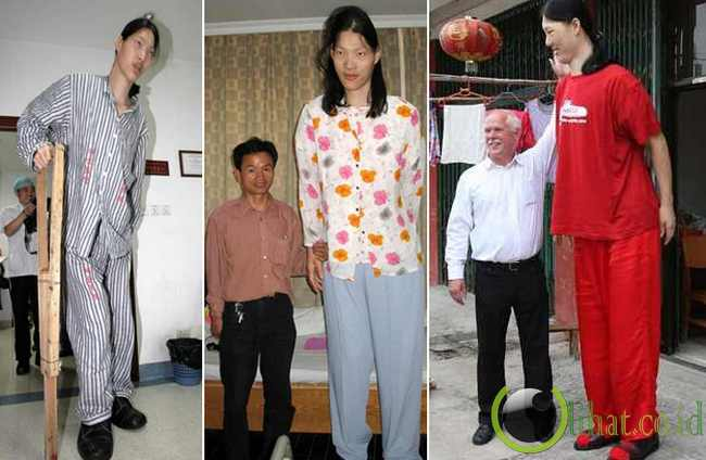 Yao Defen ( 7ft 8 in - 233 cm)