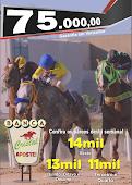 Hipódromo do Cristal - 27/11 - APOSTE PARA VENCER - INTERNET - CELULAR - AO VIVO