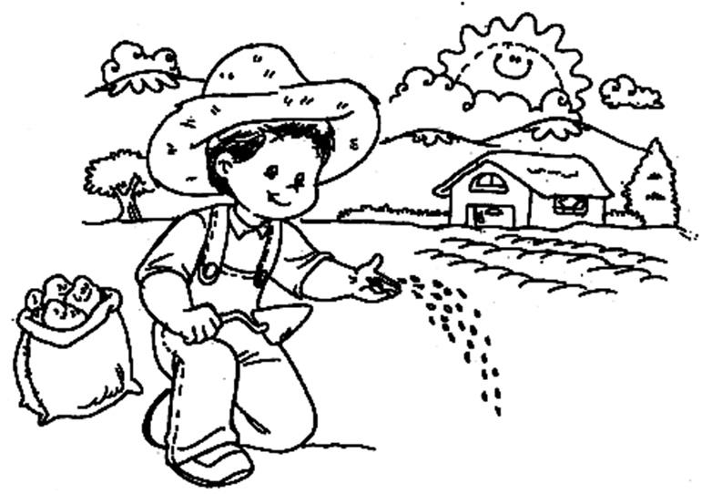 Resultado de imagen para imagenes para colorear agricultura