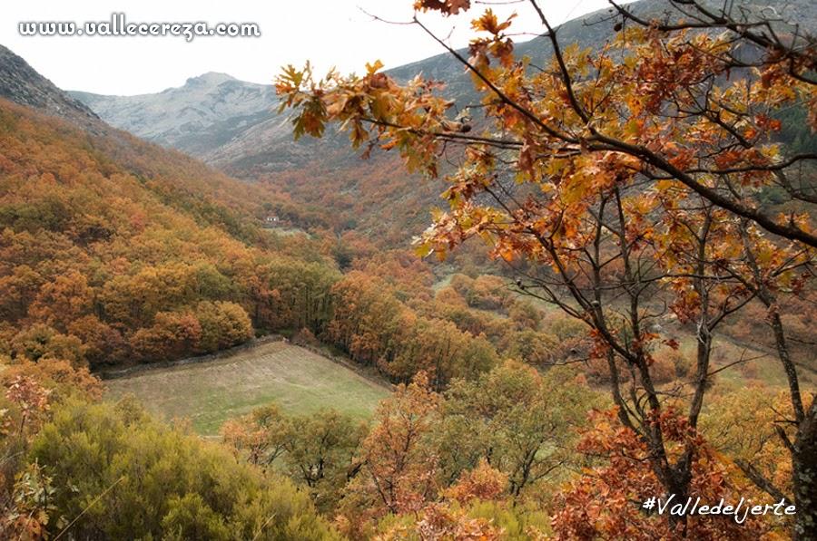 Otoño en el Valle del Jerte (otoñada)