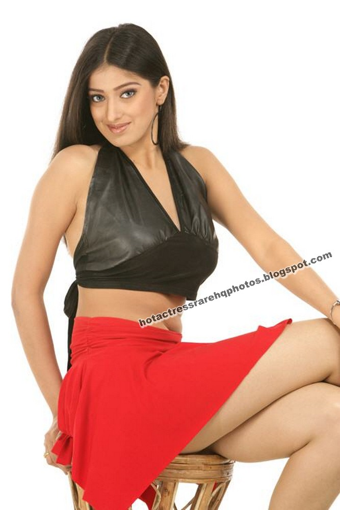 hot indian actress rare hq photos tamil and telugu actress lakshmi