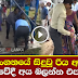 Mahiyanganaya Women Accident