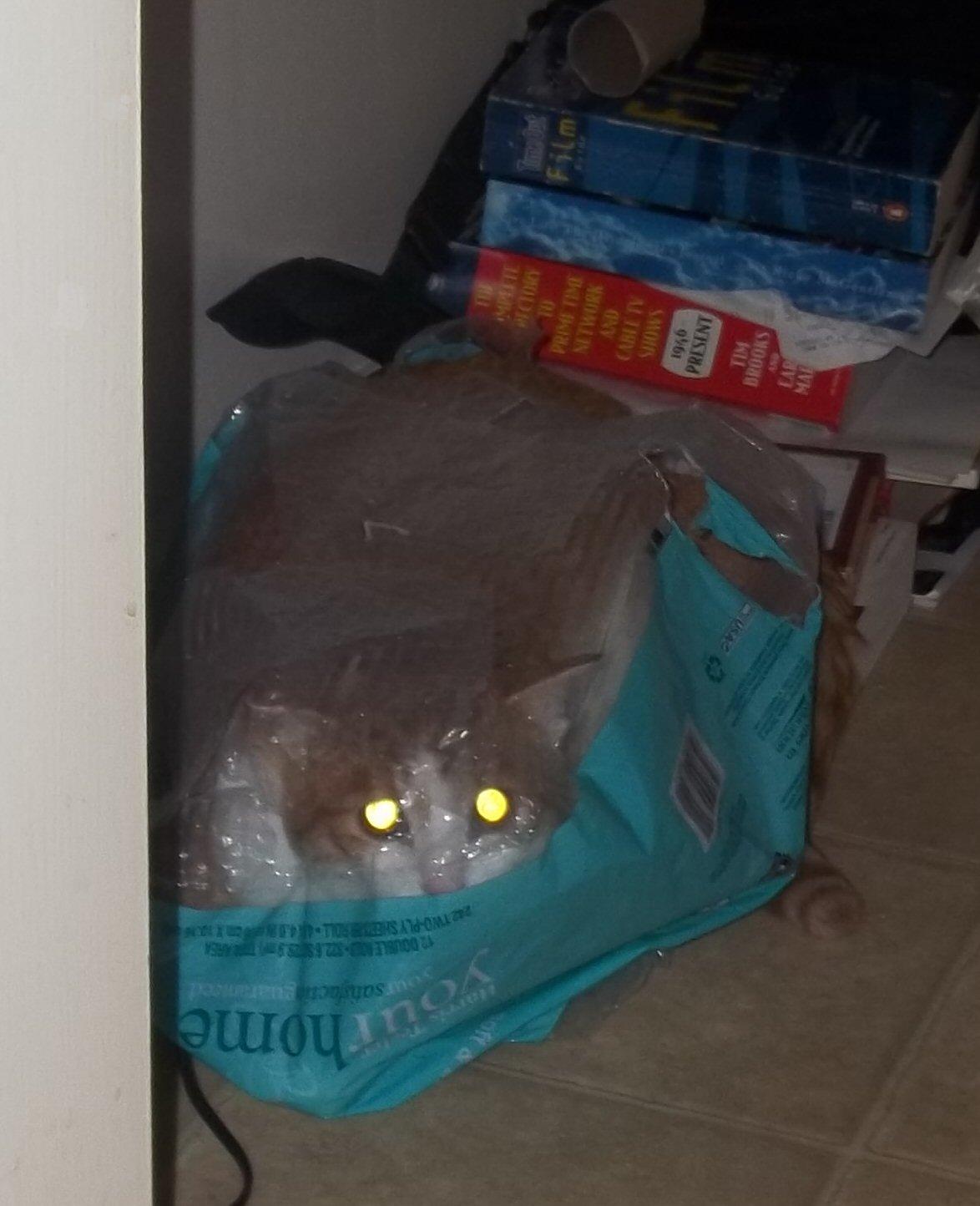 I stalking you!