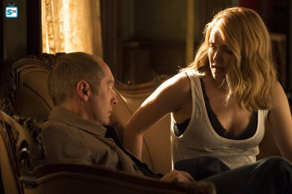 "The Blacklist - The Troll Farmer (No. 38) - Review: ""Hunting Ghosts"""