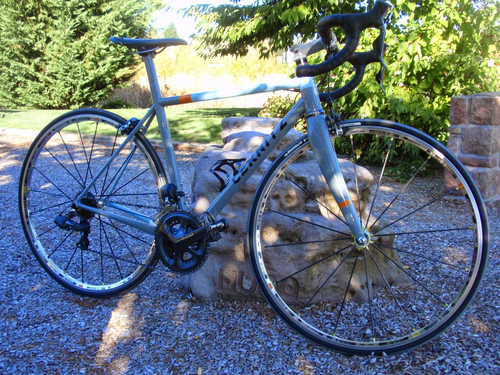 Neils Modern Bike