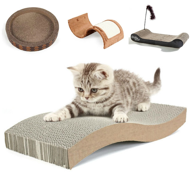 Christmas presents you should definitely buy your cat!