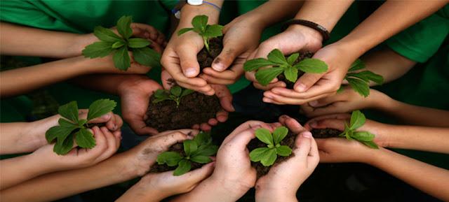 Empat tahun BL mengawal pemberitaan lingkungan hidup