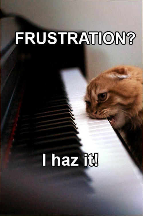 Frustration Cat - I Haz It
