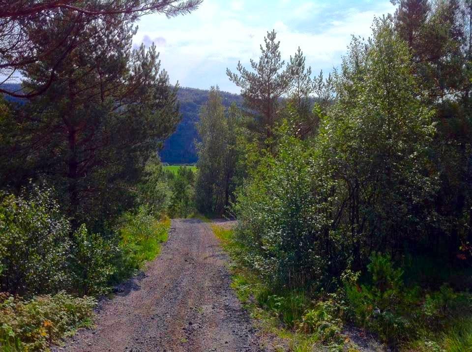 Kvinesdal, Vest-Agder, Sørlandet, Norway (Photo by JH)