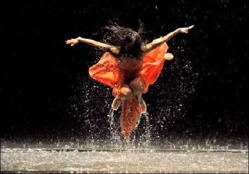 beach birds  c u0026 39 est quoi pour vous la danse contemporaine