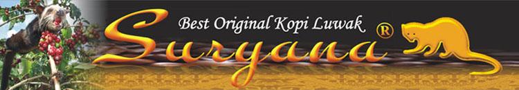kopi luwak suryana Lampung Indonesia