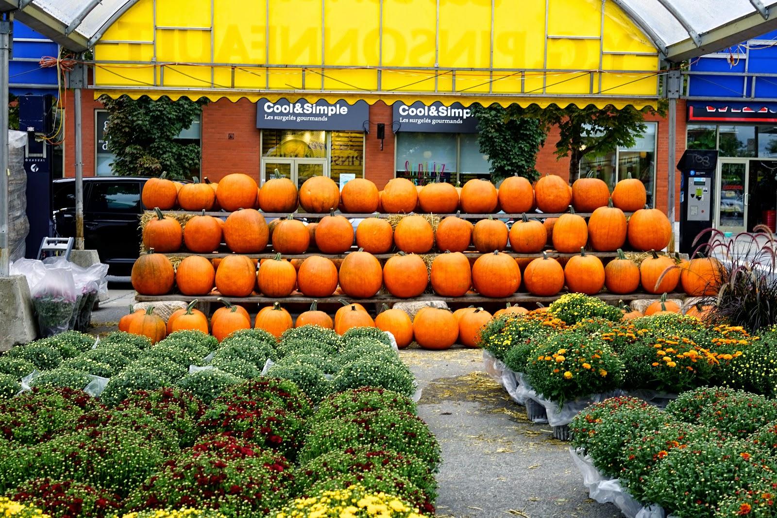 atwater market pumpkins