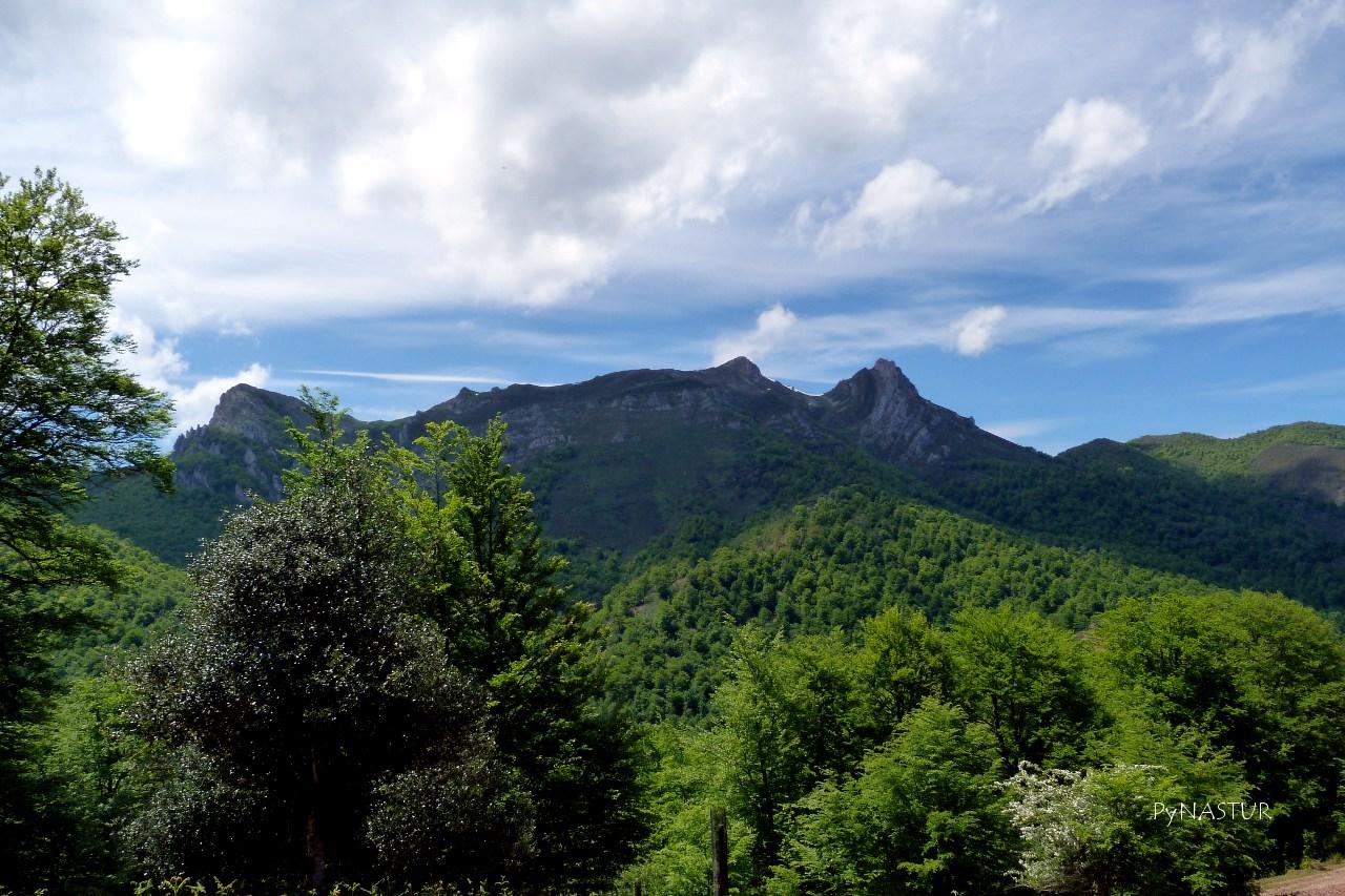 Pico del Zorru Parque Natural Ponga