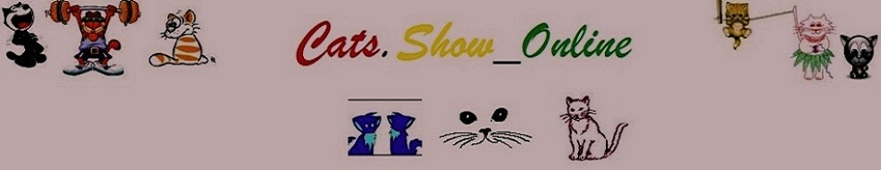 Cats Show Online