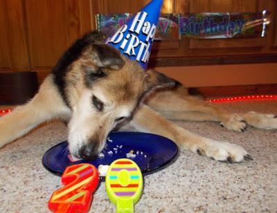 Schoep comemorando aniversario3