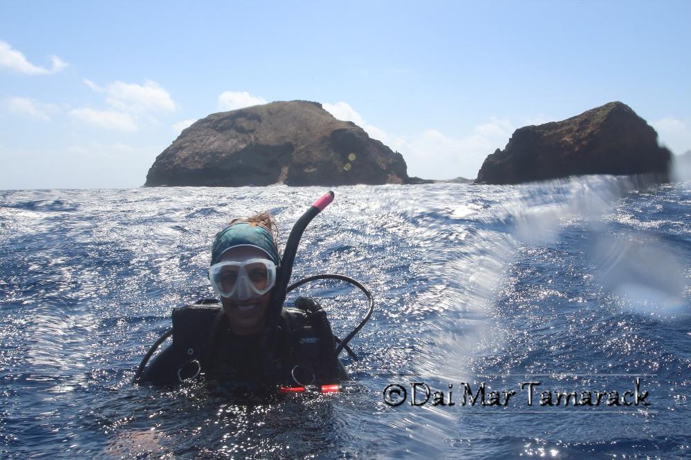 Hammerhead Dive, Mokunohiki Rock, Molokai