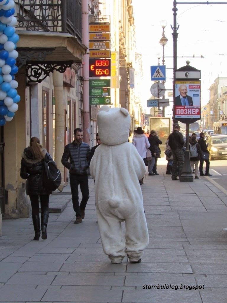 медведи в России
