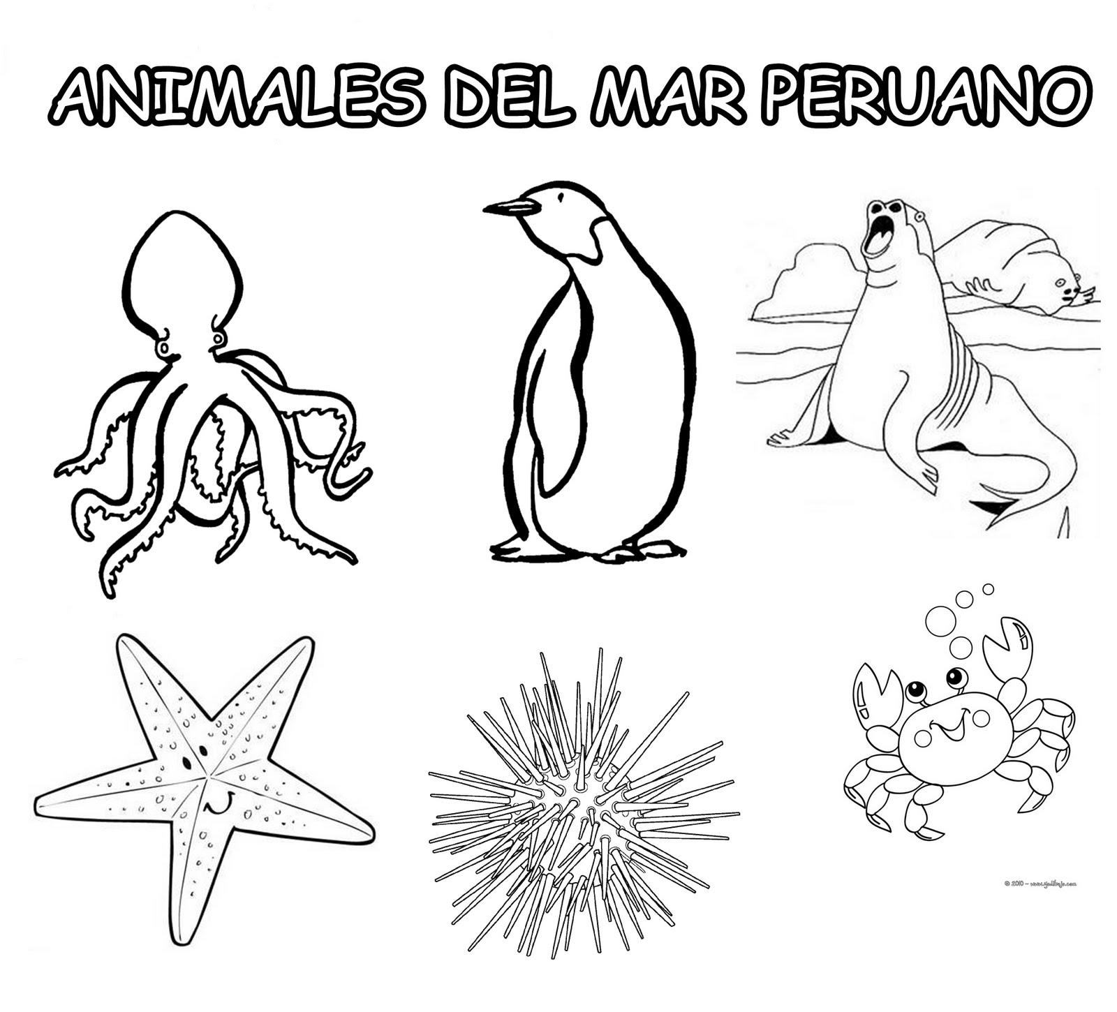 EL AMIGO QUE SIEMPRE ESTÁ CUANDO TÚ LO NECESITAS: ANIMALES ...