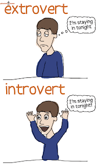Comfy chair astrology the astrology of introverts for Introvert vs extrovert
