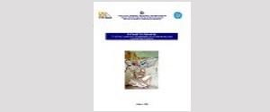 ΤΠΕ στην εκπαιδευση ενηλικων (2005)