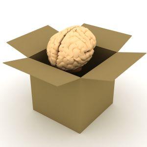 Brain In A Box2