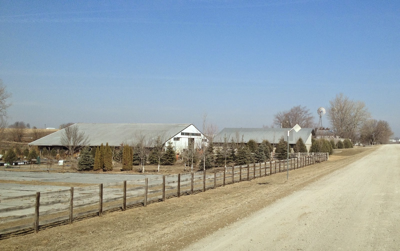 Amish Horses: Amish Greenhouse