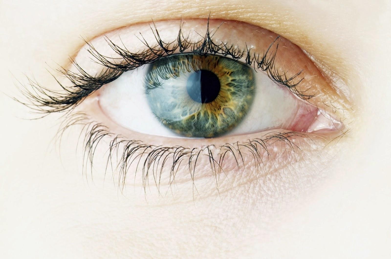 Mata Sihat Dengan Carotomax