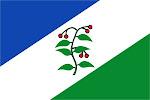 Bandera d'Arbúcies