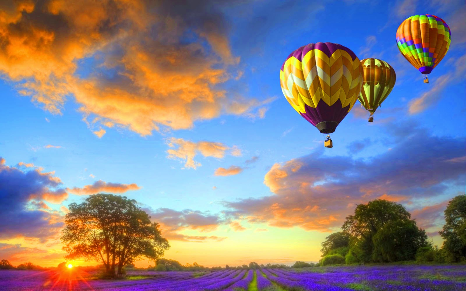 wallpapers hot air balloons wallpapers