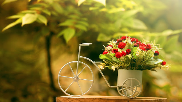 Flowerpot Bike