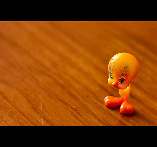 Cute tweety toy