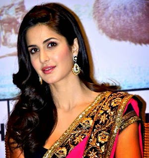 Kaitrina kaif beautiful and hot pictures in Saree