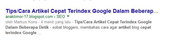 Tips/Cara Artikel Cepat Terindex Google Dalam Beberapa Detik