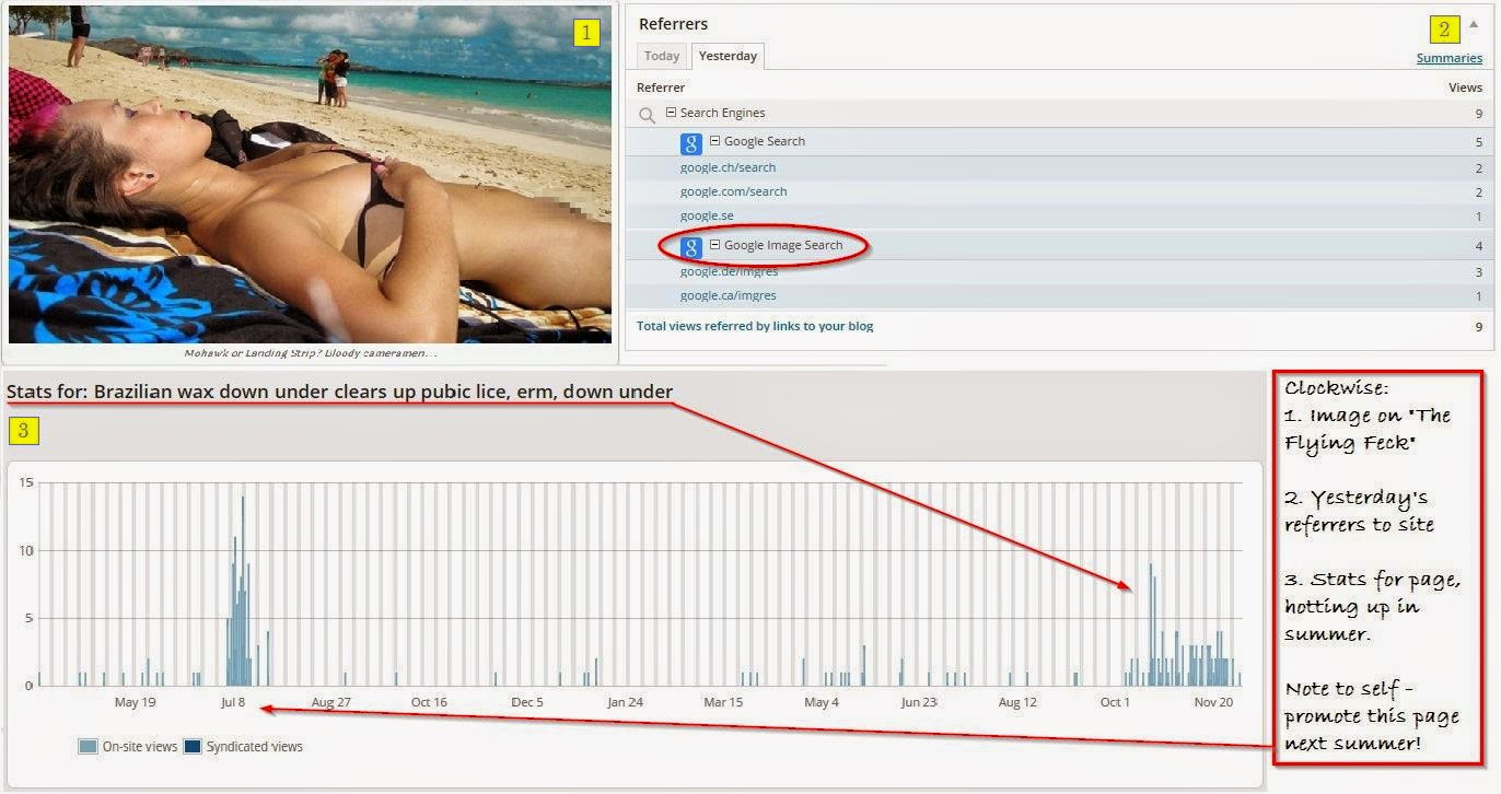 Screenshot showing traffic referrers, visits and target image of bikini wax