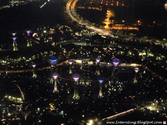 singapour-vue-marina-bay-sands-gardens-by-the-bay