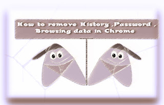 delete Browsing data in chrome