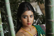 Shriya Saran latest Photos in saree-thumbnail-10