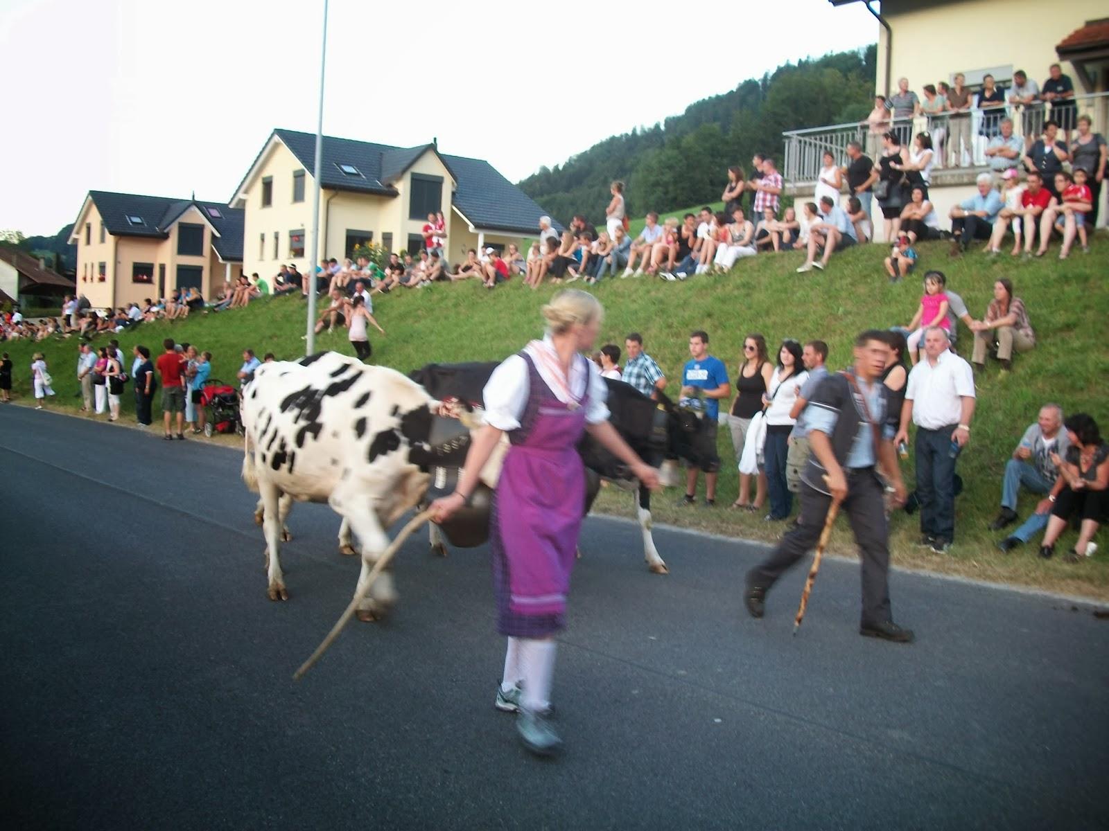 10 curiosidades sobre a Suíça.