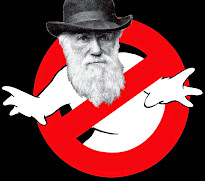 No al Darwinismo