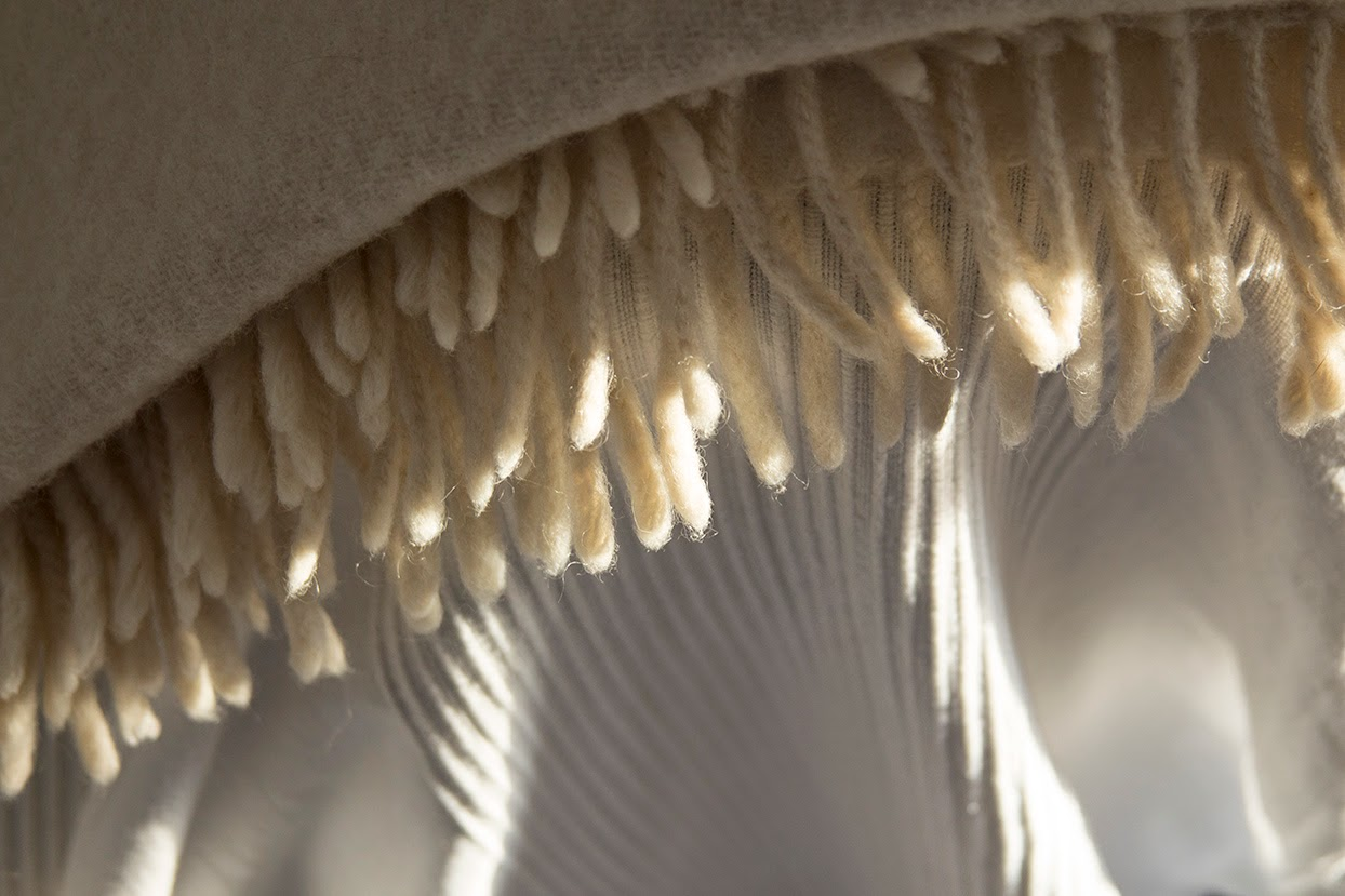 sunlight on fringes of a blanket