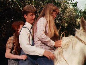 Story 29 Waltons 3 On 1 Horse