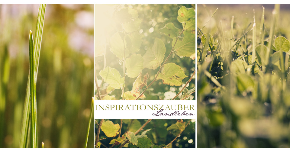 Inspirationszauber