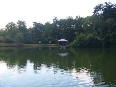 京都府・けいはんな記念公園 水景園 水景棚