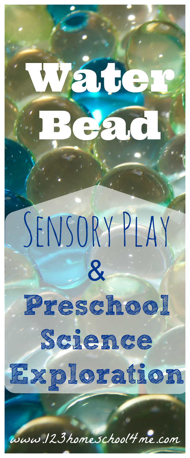 Water Bead Preschool Science #preschool #sensory #science
