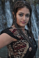 Meghana, raj, wet, hot, saree